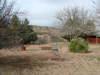 Main House Backyard